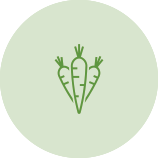 Green Carrot Icon